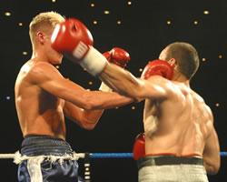 Boxingweb